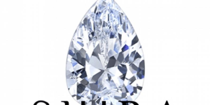 Pear_Diamonds_-_Shira_Diamonds_-_Wholesale_Diamonds_-_Loose_Diamonds_qty3-45