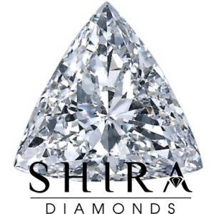 Trillion_Diamonds_in_Dallas_-_Shira_Diamonds_hi2c-oa